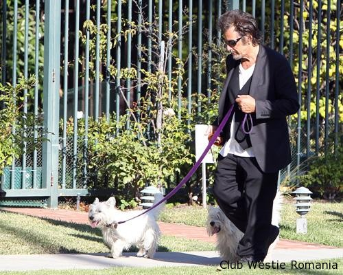 Al Pacino takes his two adorable pups for a walk in Los Angeles