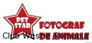 Pet Star Foto