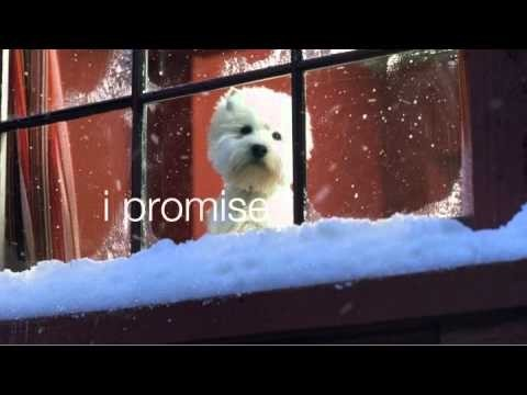 Cesar: i promise to wait up for you