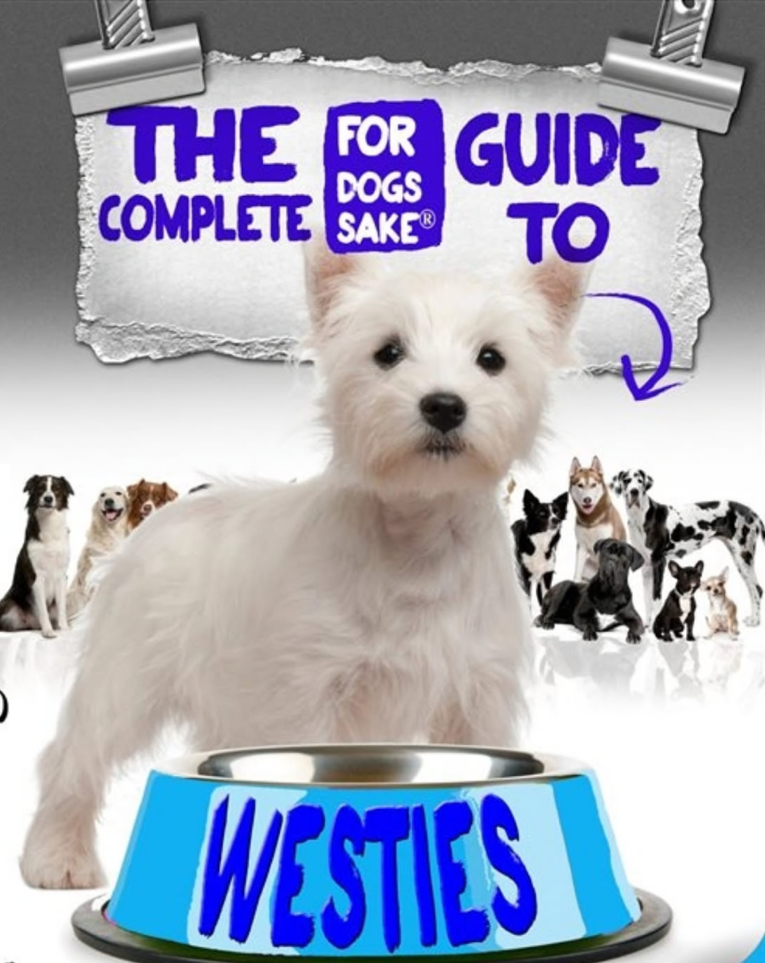 The Right and Wrong reasons for purchasing a Westie